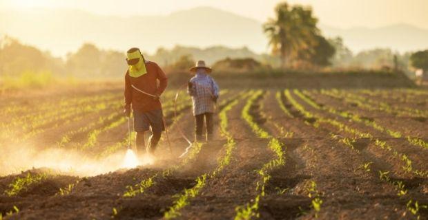 Les pesticides et l'environnement